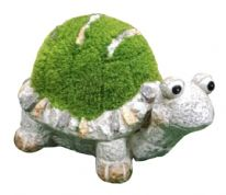 Kent Collection Flocked Turtle - M